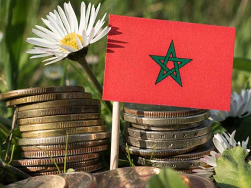 Selon Oxford Business Group, le secteur marocain des TIC a toutes les chances de contribuer au développement économique du Maroc. De plus, avec la nouvelle Loi n°121-12 et le Plan Maroc Digital 2020, le royaume bénéficiera d'une plus grande croissance économique.